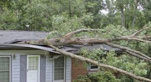 Storm Repair - Regency DRT