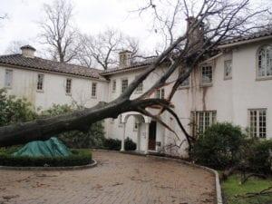 Storm Damage restoration - Regency DRT
