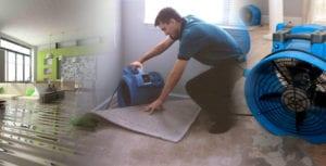 Water Damage Clean Up - Regency DRT