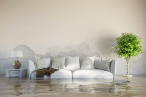 water damage cleanup port st lucie water damage port st lucie